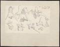Crocodilus spec. - skeletdelen - 1700-1880 - Print - Iconographia Zoologica - Special Collections University of Amsterdam - UBA01 IZ12200052.tif
