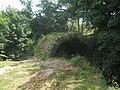Cromwell's Bridge - geograph.org.uk - 1415182.jpg
