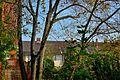 Csendélet a zajos nagyvárosban... - panoramio.jpg