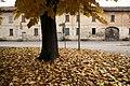 Cuggiono 11-2010 - panoramio (2).jpg