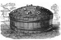 Culture du champignon dans un baquet Vilmorin-Andrieux 1883.png