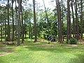 Cumbee Park Swings, Picnic Tables.JPG
