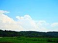 Cumulus Congestus Clouds - panoramio.jpg