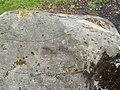 Cup markings in Auchnacraig Urban Park - geograph.org.uk - 927220.jpg