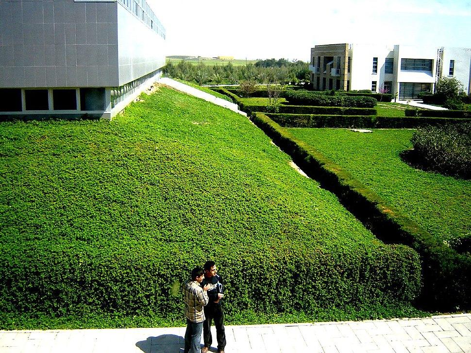 Cyprus International University campus 2