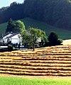 Dörlinbach Gutenberg - panoramio.jpg