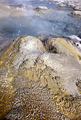 Daisy Geyser - Image: Daisy geyser not erupting