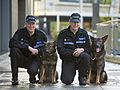 Day 341 - West Midlands Police - Dog handlers receive awards (8251729393).jpg