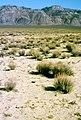 Deep Springs Valley, California 1989 02.jpg