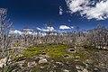 Devils Gullet, Tasmania (31586978793).jpg