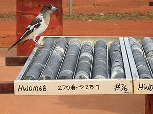 Core sample - Rock core samples, the product of a diamond rig. A pied butcherbird perches nearby.
