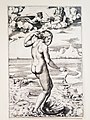 Die Geburt der Venus, um 1516.jpg