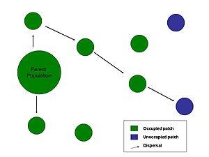 Biological dispersal - Dispersal from parent population