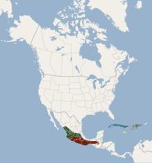 Distribution of Macrotus waterhousii.png