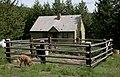 Ditch Creek Guard Station, Umatilla National Forest (34497197916).jpg