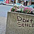 Don't Settle (2692184765).jpg