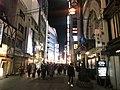 Dotombori Shopping Street at night 20190201-2.jpg