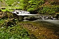 Down The Stream (217033401).jpeg