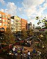 Downtown Woodstock.jpg