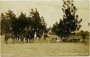 Drag hunting - Photo postcard published in 1916 by photographer E.C. Eddy, showing a draghound pack in Southern Pines, North Carolina