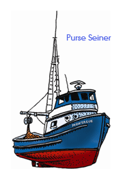 Drawing of a purse seiner