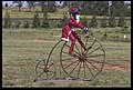 Dubbo Christmas in the field-2and (3154252619).jpg