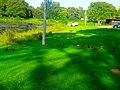 Ducks in Vilas Park - panoramio (1).jpg