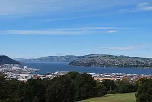 达尼丁: Dunedin from Lookout