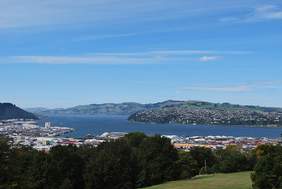 Dunedin from Lookout