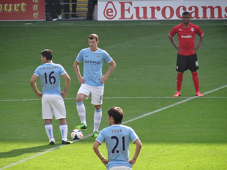 Edin Džeko, pictured in Manchester City shirt, began his career at Željo.