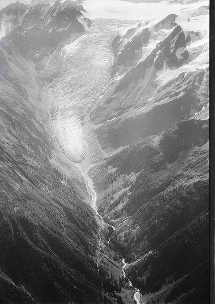 ETH-BIB-Glacier du Trient, Gletscherzunge v. N. W. aus 3000 m-Inlandflüge-LBS MH01-005234