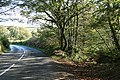 East Worlington, the old road to Witheridge - geograph.org.uk - 271052.jpg