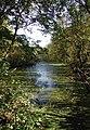 Eastrington Ponds Nature Reserve - geograph.org.uk - 592955.jpg