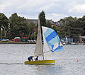 Edgbaston Reservoir 4 (3755601814).jpg