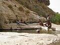 Ein Akev Tahton, bedouins 01.jpg