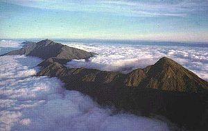 Resultado de imagen para pico naiguatá