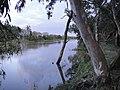 El San Lorenzo desde la orilla del eucaliptal - panoramio.jpg