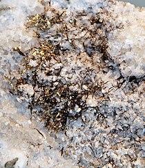 Electrum on quartz Telluride (cropped).jpg