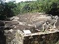 Elemento 15 de la zona arqueològica de Palma Sola, Acapulco, Guerrero.jpg