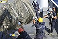 Emergenza ecoballe Golfo di Follonica - 50221696968.jpg