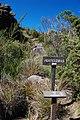 End of Prateleiras trail^ - panoramio (4).jpg