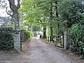 Entrance to Pine Hill, Old Forewood Lane - geograph.org.uk - 1474435.jpg