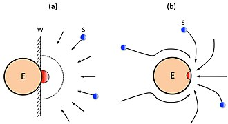 Diffusion limited enzyme -  An illustration to show (a) Alberty-Hammes-Eigen model, and (b) Chou's model, where E denotes the enzyme whose active site is colored in red, while the substrate S in blue.