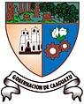 Escudo Gobernacion caaguazu.jpg