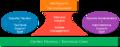Estructura-de-las-organizaciones.png
