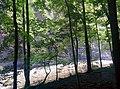 Fantasy river - panoramio.jpg