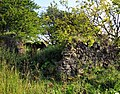 Farm ruin - geograph.org.uk - 926224.jpg