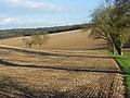 Farmland, Stokenchurch - geograph.org.uk - 742684.jpg