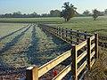 Farmland, Wokingham - geograph.org.uk - 616605.jpg