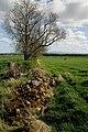 Farmland at Printonan Hill - geograph.org.uk - 1291874.jpg